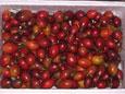 http://putri.50webs.com/fresh_fruits/Terong-1.jpg
